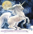 Beautiful Unicorns - unicorns photo