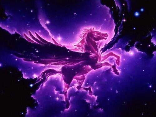 Colourful Pegasus - unicorns Photo