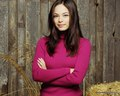 Beauty Kristin - kristin-kreuk photo