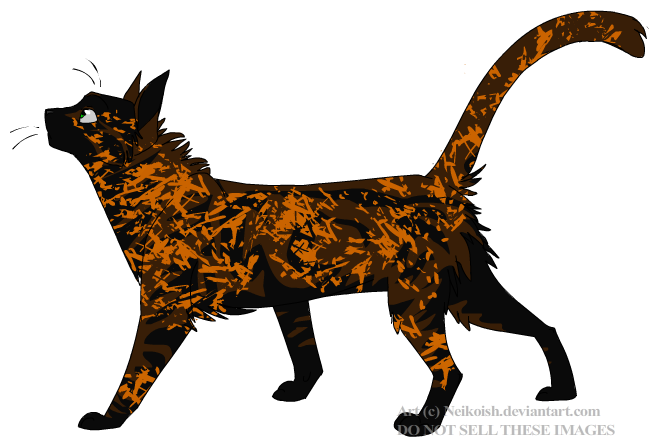 Darkleaf v1 - Warrior Cats Image Service Photo (24644284