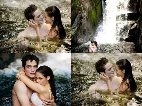 Forever Twilight