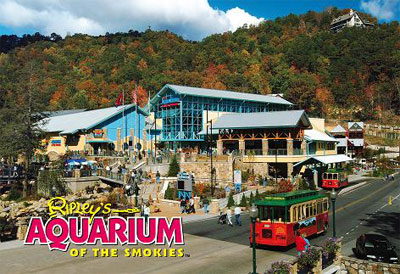 Tennessee Images Gatlinburg Tn Wallpaper And Background