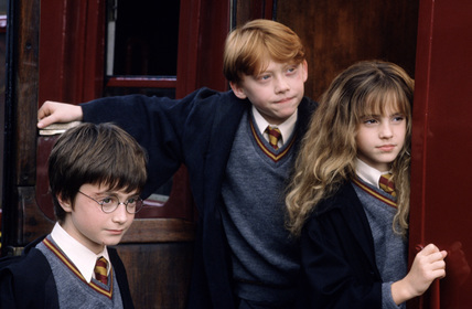 Harry, Ron and Hermione! ;)