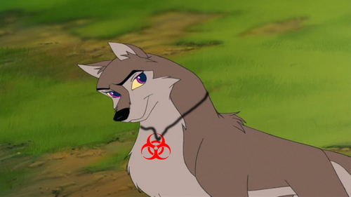 If Katie was in Balto