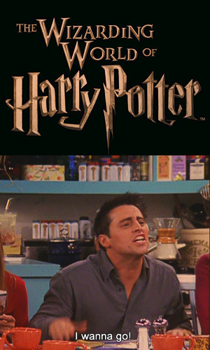 "Joey ""Harry Potter"""