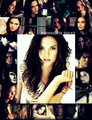 Meredith Sulez - minor Damon/Meredith - the-vampire-diaries-books fan art