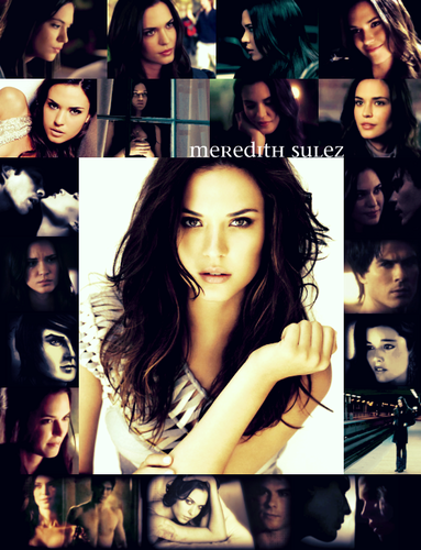 Vampire Diaries Books wallpaper with a portrait titled Meredith Sulez - minor Damon/Meredith