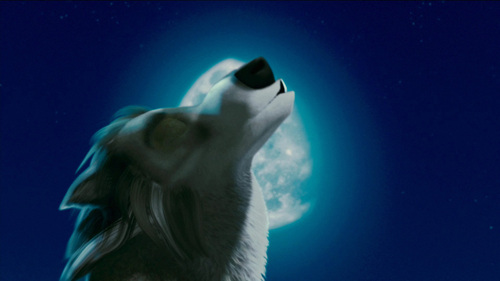Moonlight howl pic