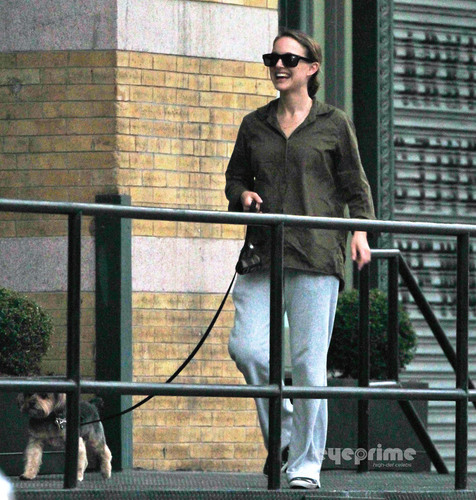 Natalie Portman spotted walking her Dog in NY, Aug 18
