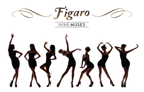Nine Muses Обои entitled Nine Muses - Figaro