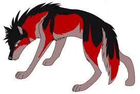 Red chó sói, sói