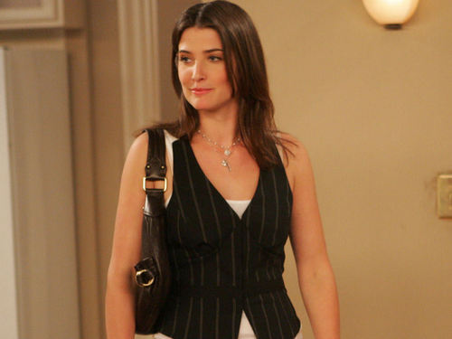 Robin Scherbatsky wallpaper probably with a playsuit, a well dressed person, and a chemise entitled Robin Scherbatsky