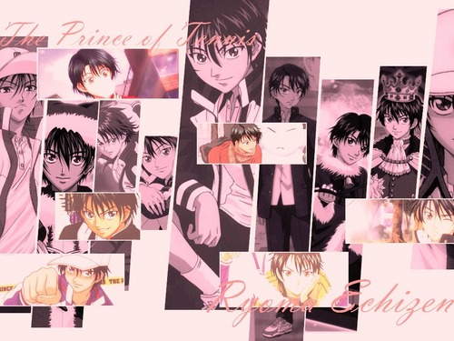 Prince of Tennis wallpaper with an electric refrigerator and a refrigerator titled Seigaku Echizen