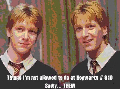 Things I'm not allowed to do at Hogwarts