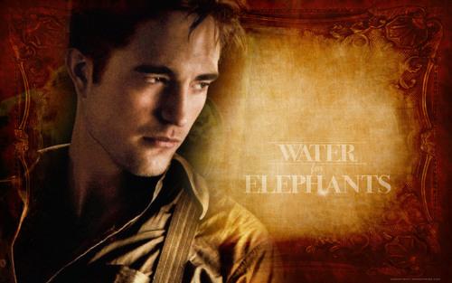 Water for Elephants wallpaper