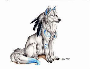 भेड़िया Drawings
