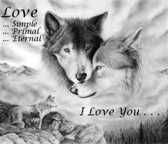 loup l'amour