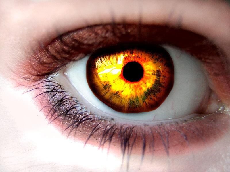 Yellow eyes - Twilight Series Wallpaper (24688441) - Fanpop