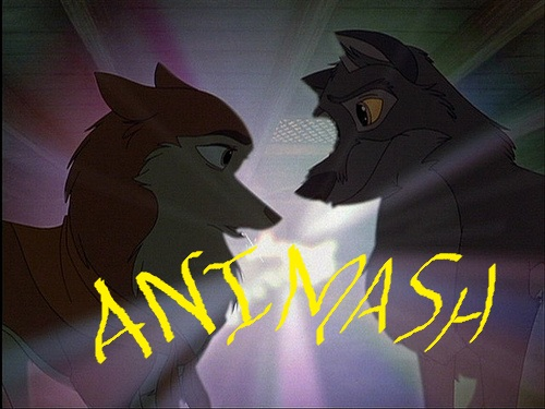 balto animash