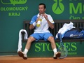 hot Radek Stepanek - tennis wallpaper