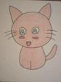 manga kitty - baby-animals photo