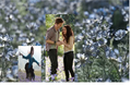 renesmee in edward and bella's meadow! - edward-bella-and-renesmee photo