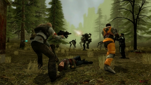 Half Life wallpaper containing a rifleman and a navy seal titled Combine assault