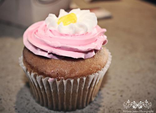 cupcake, kek cawan