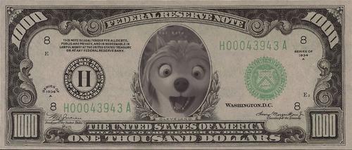 DOLLAR!!
