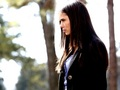 Elena Gilbert ❤