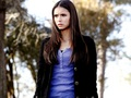 Elena Gilbert  - elena-gilbert wallpaper