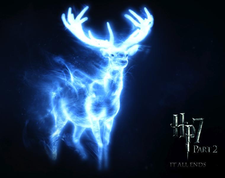 http://images5.fanpop.com/image/photos/24700000/HP-harry-potter-24791430-760-600.jpg