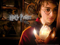 Harry Potter and The Goblet Of Fire - harry-james-potter wallpaper