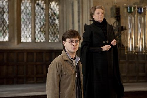 Hogwarts Professors wallpaper titled Minerva and Harry