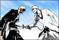 Ichigo and Hichigo - hollow-ichigo photo