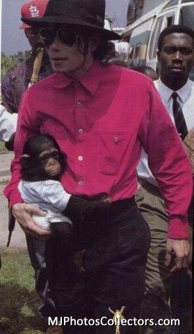 Look where the monkey's leg is LMAOOOOOOOOOOOOOOOOOOOOOO XD