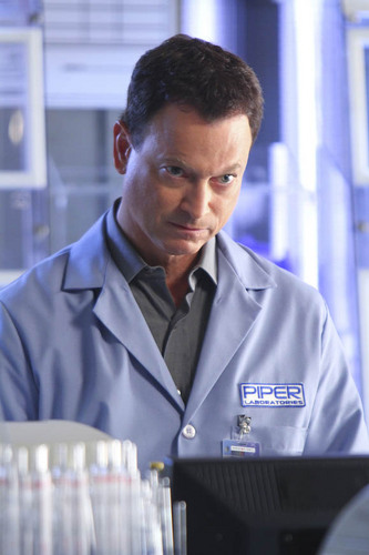 Gary Sinise wallpaper possibly containing a business suit titled Mac Taylor (season 8)