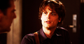 Reid in season 5~ - dr-spencer-reid fan art