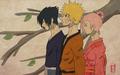 naruto - Sasuke - Naruto - Sakura wallpaper