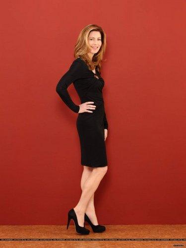 Season 2 - Promotional bức ảnh