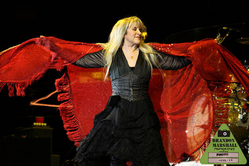 stevie nicks wallpaper possibly with a jantar dress, a kirtle, and a polonesa, polonês, polonaise called Stevie Nicks