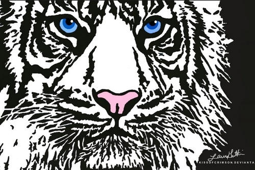 Animals wallpaper called White Tiger