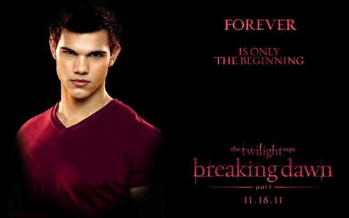 breaking dawn part 1 바탕화면