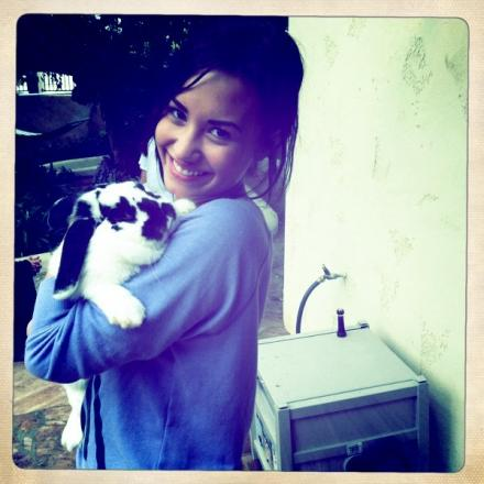 demi and her bunny