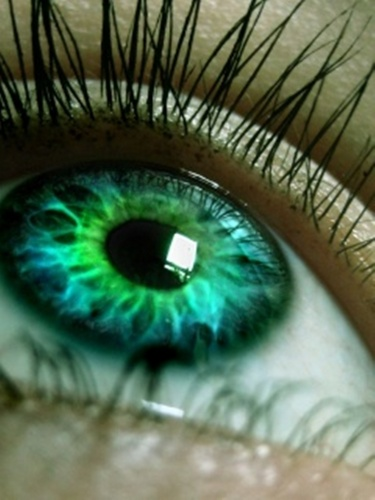 People With Green Eyes wallpaper entitled green eyes