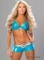 kelly kelly blue angel - kelly-kelly photo