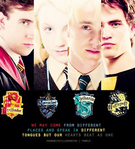Hogwarts House Rivalry! wallpaper called :)