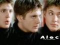 Alec - dark-angel wallpaper