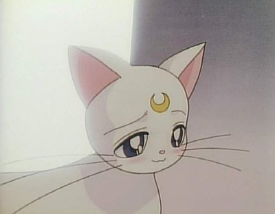 sailor moon artemis cat  Artemis - sailor-moon Screencap