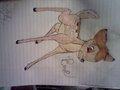 Bambi tht i drew